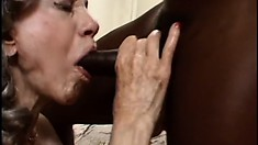 Black stallion gives white grandma what she's been craving for ages