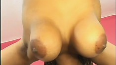 Curvy ebony girl exposes her body, blows a black rod and gets fucked hard on the couch