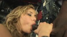Shyla Stylez is not afraid to work a massive black jackhammer
