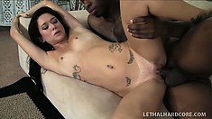 Promising inexperienced model with small titties gets rammed by ebony cream-stick