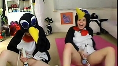 Teen Penguins On Cam